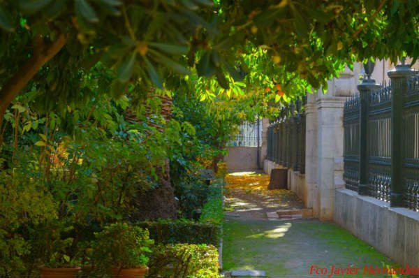 jardin botánico granada