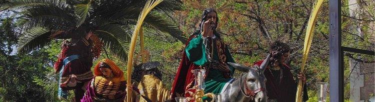Ilustre Cofradía de la Entrada de Jesús en Jerusalén y Nuestra Señora de la Paz